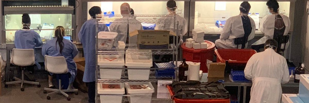 'They Are Desperately Trying to Hire': Inside Curative's Race to Produce 10K COVID-19 Test Kits a Day