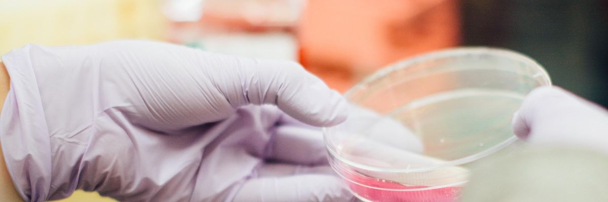 Meet the New SoCal Accelerator for Biotech Startups