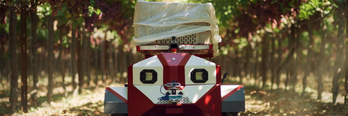 Meet Carry, the Robot That Aims to Make Picking Produce Easier for Small Farms