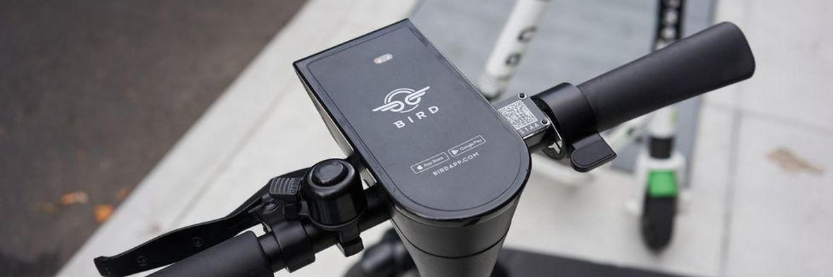 Bird Announces Revenue Rebound, More Losses — and an E-bike