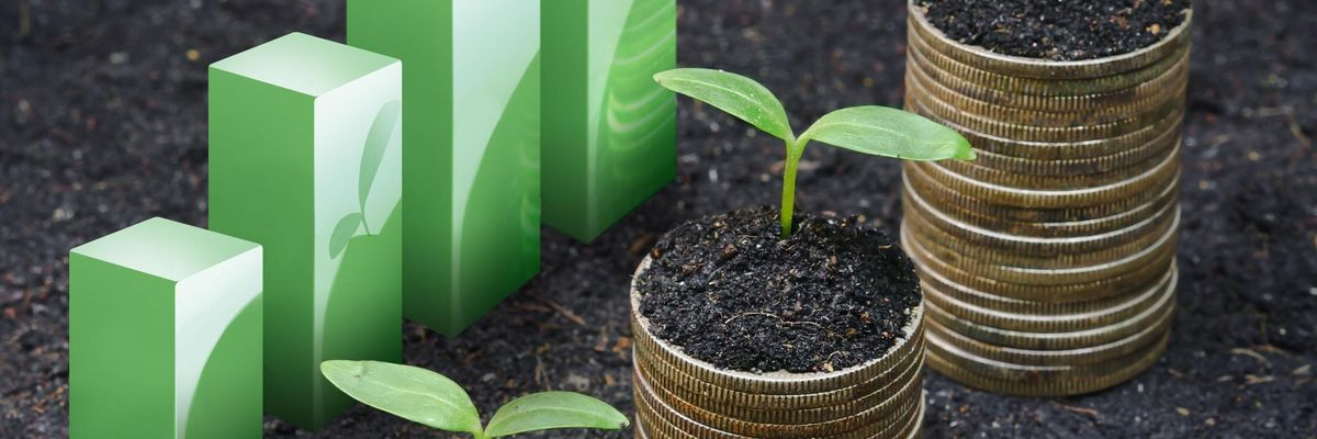 Column: How to Start a Corporate Social Responsibility Program at Your Startup — and Why